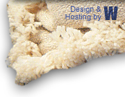 Design & Hosting by WEBlogic